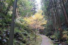 五宝の滝5