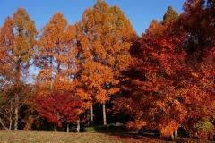 めい想の森 (2)