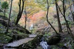 五宝の滝6