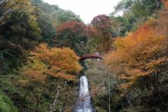 五宝の滝7