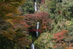 五宝の滝8