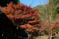 五宝滝 (2)
