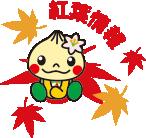 桜開花情報/紅葉情報